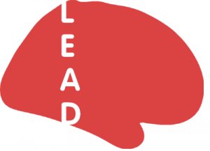 Lead Neuroimaging Suite